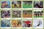 ニュージーランド スポーツ留学
